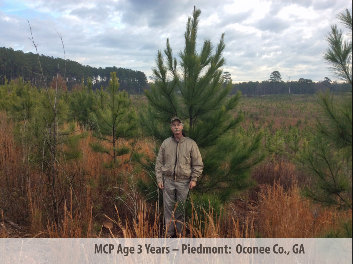 MCP® at 3 Years in Oconee, GA