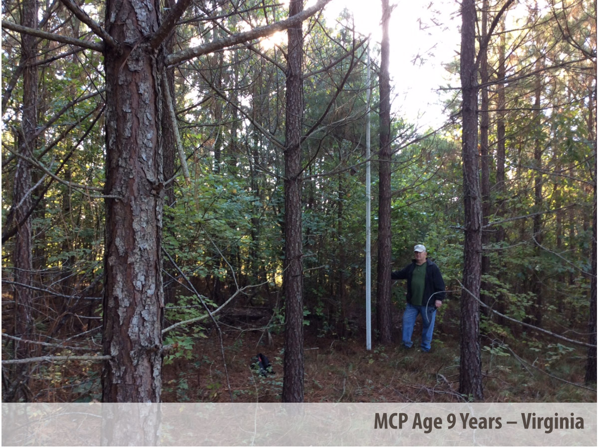 MCP® at 9 Years in Virginia